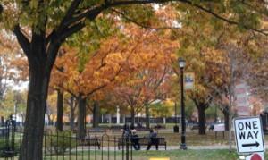 massachusetts park scene