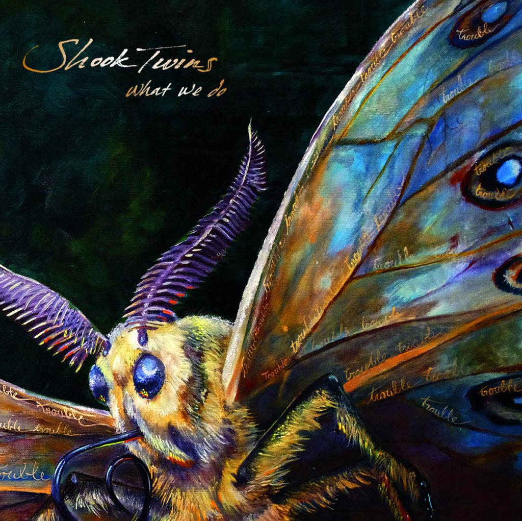 shook twins album butterfly